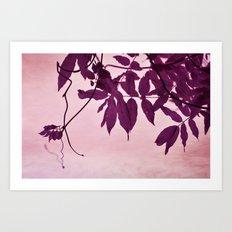 wisteria leaves Art Print