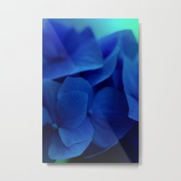 Pretty Indigo Hydrangea Flower  #decor #society6 #buyart Metal Print