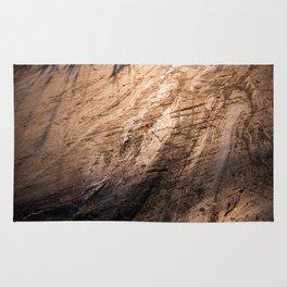 Ice age, copper Rug