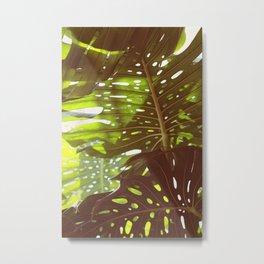 Let Light In Metal Print