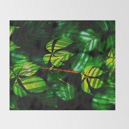 Leaves V9WL Throw Blanket