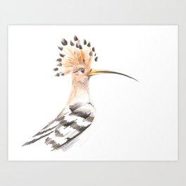 Hairy Bird Art Print