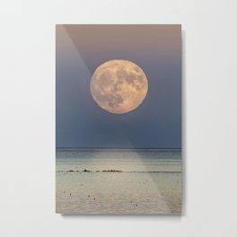 Spring Moonrise Metal Print