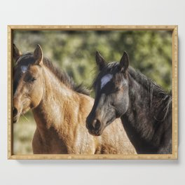 A Filly and a Colt from Garcia's band - Pryor Mustangs Serving Tray