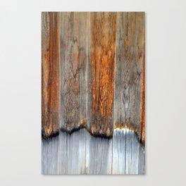 Burn Canvas Print