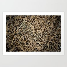 Ground Cover Art Print
