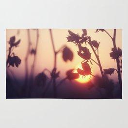 Garden Sunset Rug