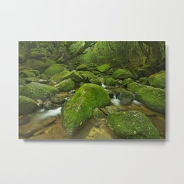 River along Shiratani Unsuikyo rainforest trail on Yakushima Island, Japan Metal Print