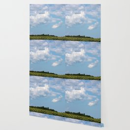 Field of Sunflowers Horizontal Wallpaper