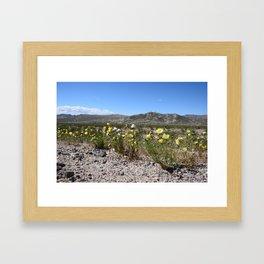 Desert Wildflowers Framed Art Print