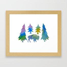 bison / buffalo Framed Art Print