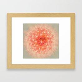 Amazing dandlion Framed Art Print