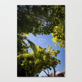 A many-splendoured thing Canvas Print