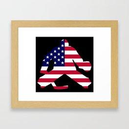 American Flag Goalie Framed Art Print