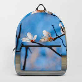 Delicate Japanese Apricot Flowers, Blue Sky Backpack