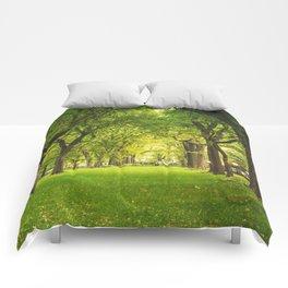Central Park Summer Comforters