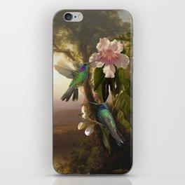 Sparkling Violetear Hummingbirds iPhone Skin
