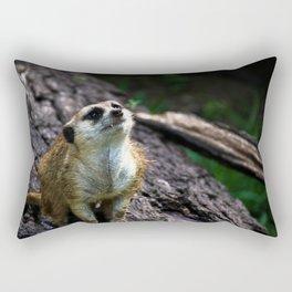 # 221 Rectangular Pillow