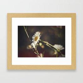 White Flower Spider Framed Art Print