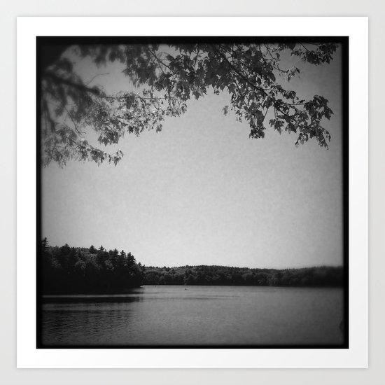 On the bank of Walden Pond Art Print