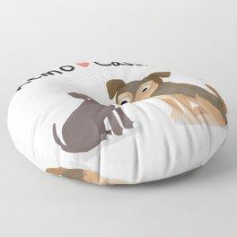 "Custom Artwork, ""Remo and Cassidy"" Floor Pillow"