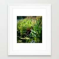 shield Framed Art Prints featuring shield by ibelieveimages