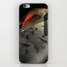 Bird I iPhone & iPod Skin
