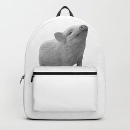 baby piglet b&w Backpack