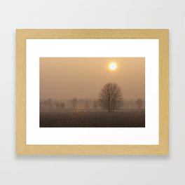 Early morning in a clearing Framed Art Print