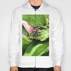 Wasp on flower16 Hoody