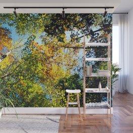 Colors of Fall Wall Mural
