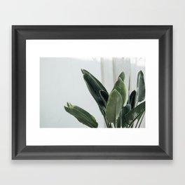 Botanical Leaves Framed Art Print