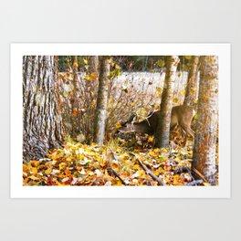 Deer In The Aspens Art Print