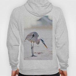 Blue Heron on the Beach Hoody