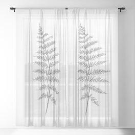 Lone Fern Sheer Curtain