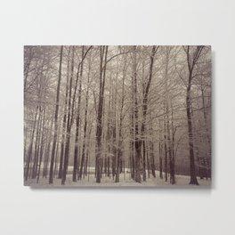 Indiana Winter Metal Print