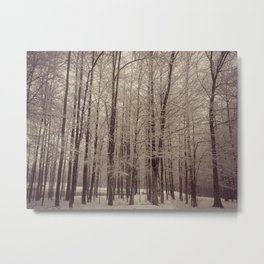 Indiana Winter Metal Print