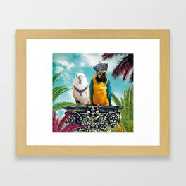 Couple of Parrots Framed Art Print