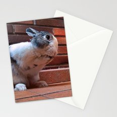 Le Lapin Stationery Cards
