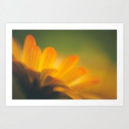 Gold Summer Art Print