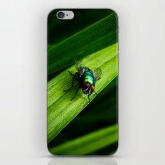 Mr. Blue-Bottle iPhone & iPod Skin