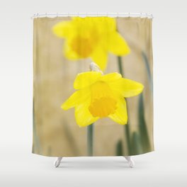 Two yellow narcissus flowers Shower Curtain