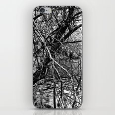 Drifting iPhone Skin