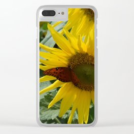 A Butterfly on a Sunflower in the Smoky Mountains Clear iPhone Case