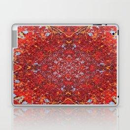 Internal Kaleidoscopic Daze-2 Laptop & iPad Skin