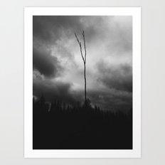 The Lonley Tree Art Print