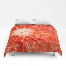 Bubbly GF Comforters