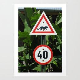 African Sign Art Print
