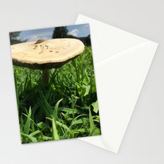 Mushroom in Field Stationery Cards