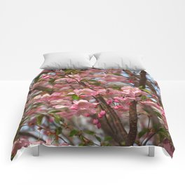 Cherry blossom spring Comforters